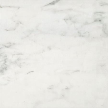 H0-銀狐
