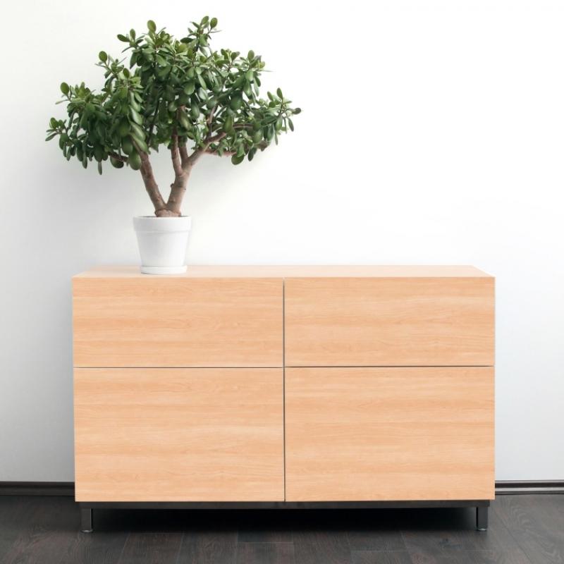 C0-白楓木